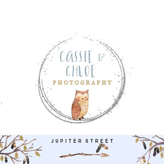 Logo Design-Owl Logo-Photography by JupiterStreetDesigns on Etsy
