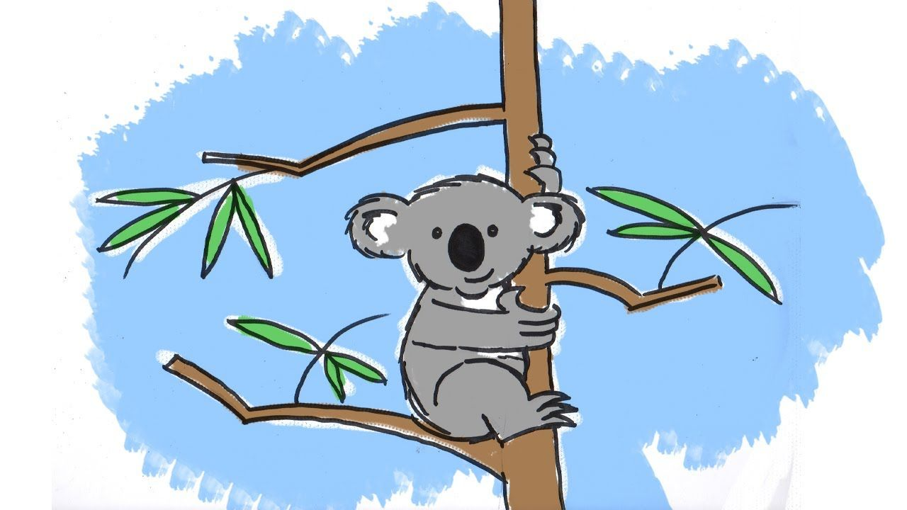 How To Draw A Cute Cartoon Koala Youtube Cute Cartoon Koala Cute Pictures