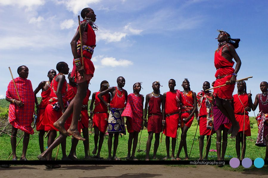 Masai Mara Kenya Unforgettable Experience We Spent The Day With - Maasai tribe wild animals attend wedding kenya