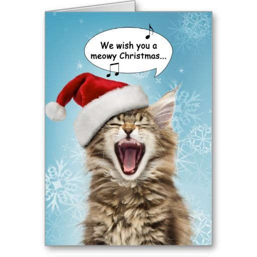 Singing Cat Christmas Card Maine Coon kitten, too cute! #christmascats #cats