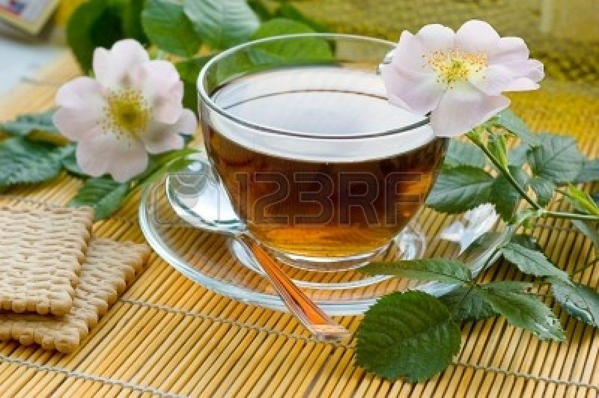 Cup of tea with dog-rose blossom Stock Photo