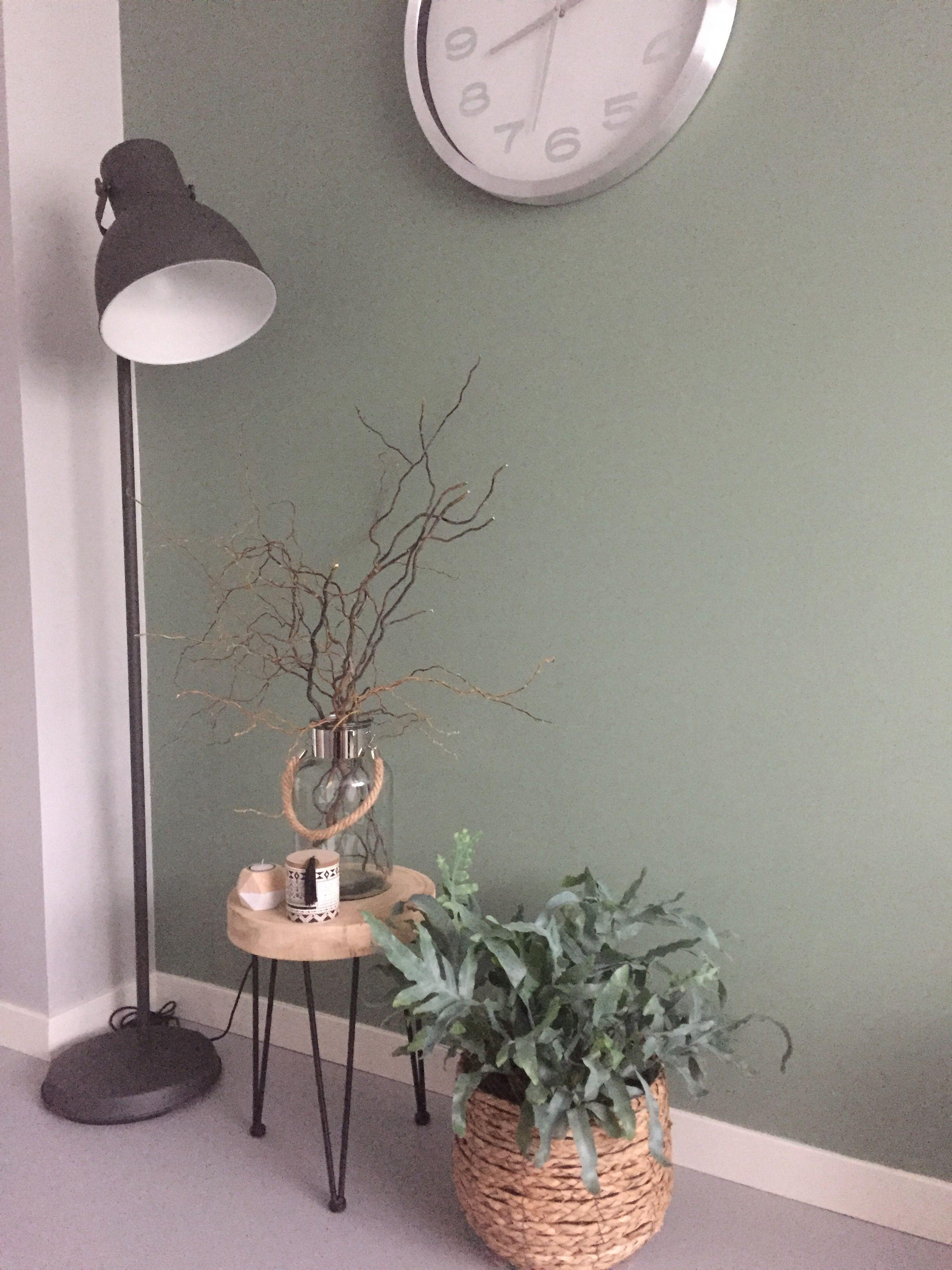 cb130d94586 Mooie vergrijsd groene muur. Kleur geordend van Histor. Met mooie  houtelementen en grijs groene plantphlebodium plant