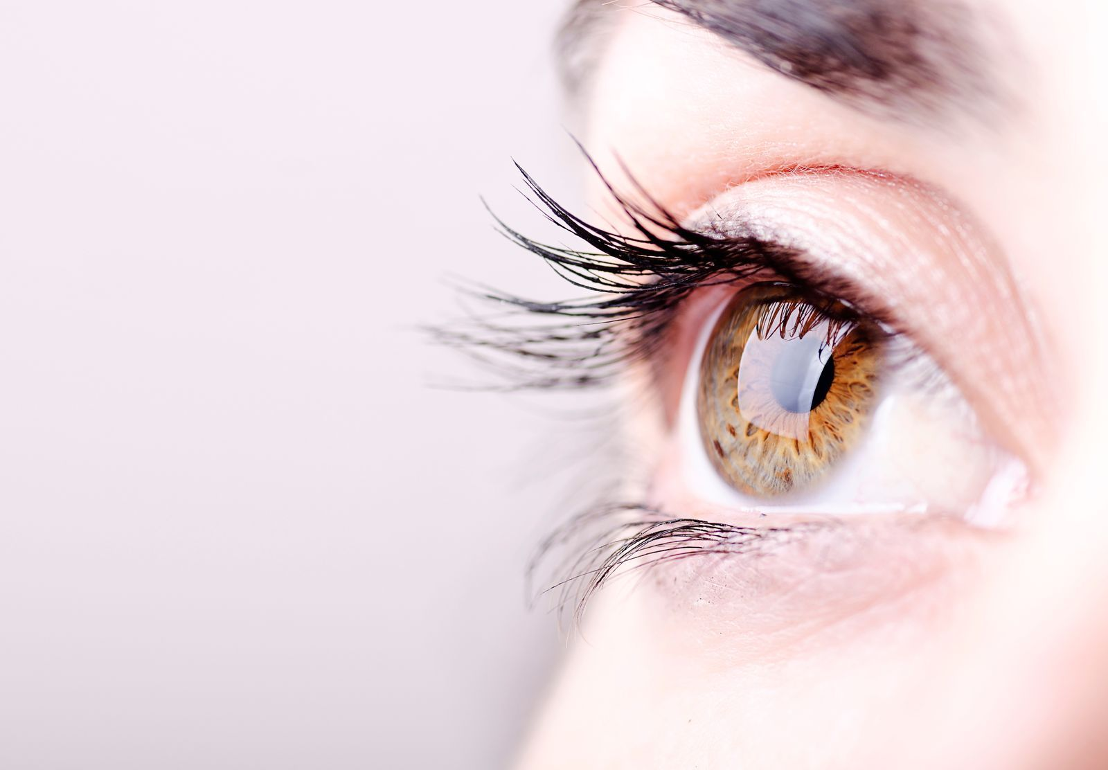 You Probably Have Tiny Bugs Living On Your Eyelashes Right ...