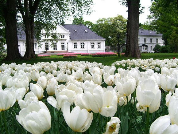 Norway - Bygdøy Royal Farm is the official summer residence of The King and Queen.