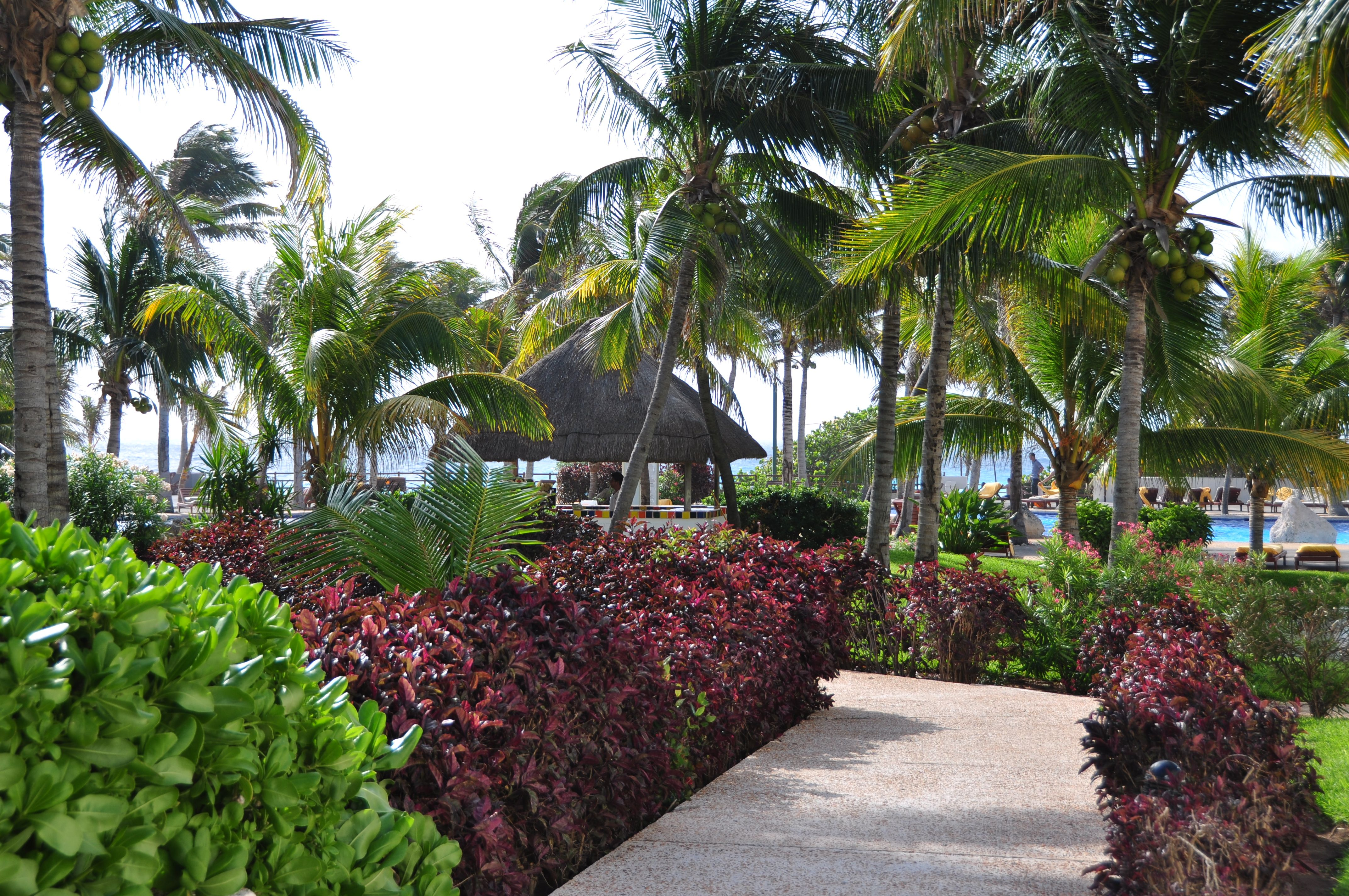 Come stroll through the beautifully landscaped gardens at Oasis Cancun with surprises around every turn.