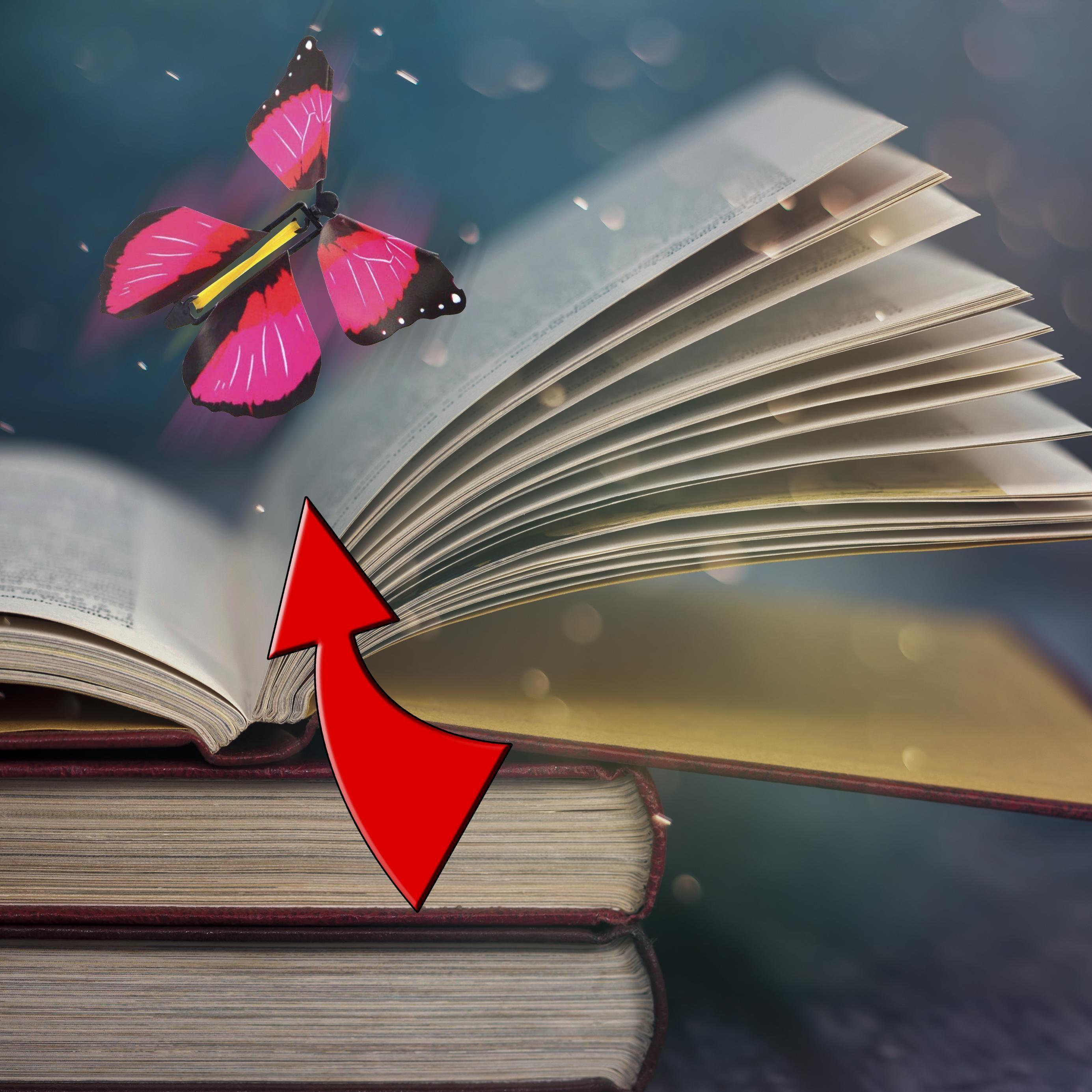 Fliegende Schmetterlinge als Geschenk?