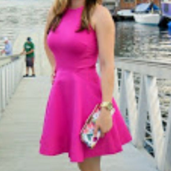 Ted Baker Pink Fit and Flare Dress