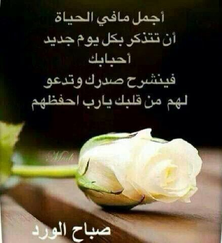 صباح الخير Morning Greeting Wisdom Quotes Wisdom