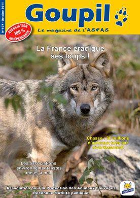 Association Pour La Protection Des Animaux Sauvages Protection Des Loups Porte Plainte Contre L Protection Des Animaux Animaux Sauvages Defense Des Animaux