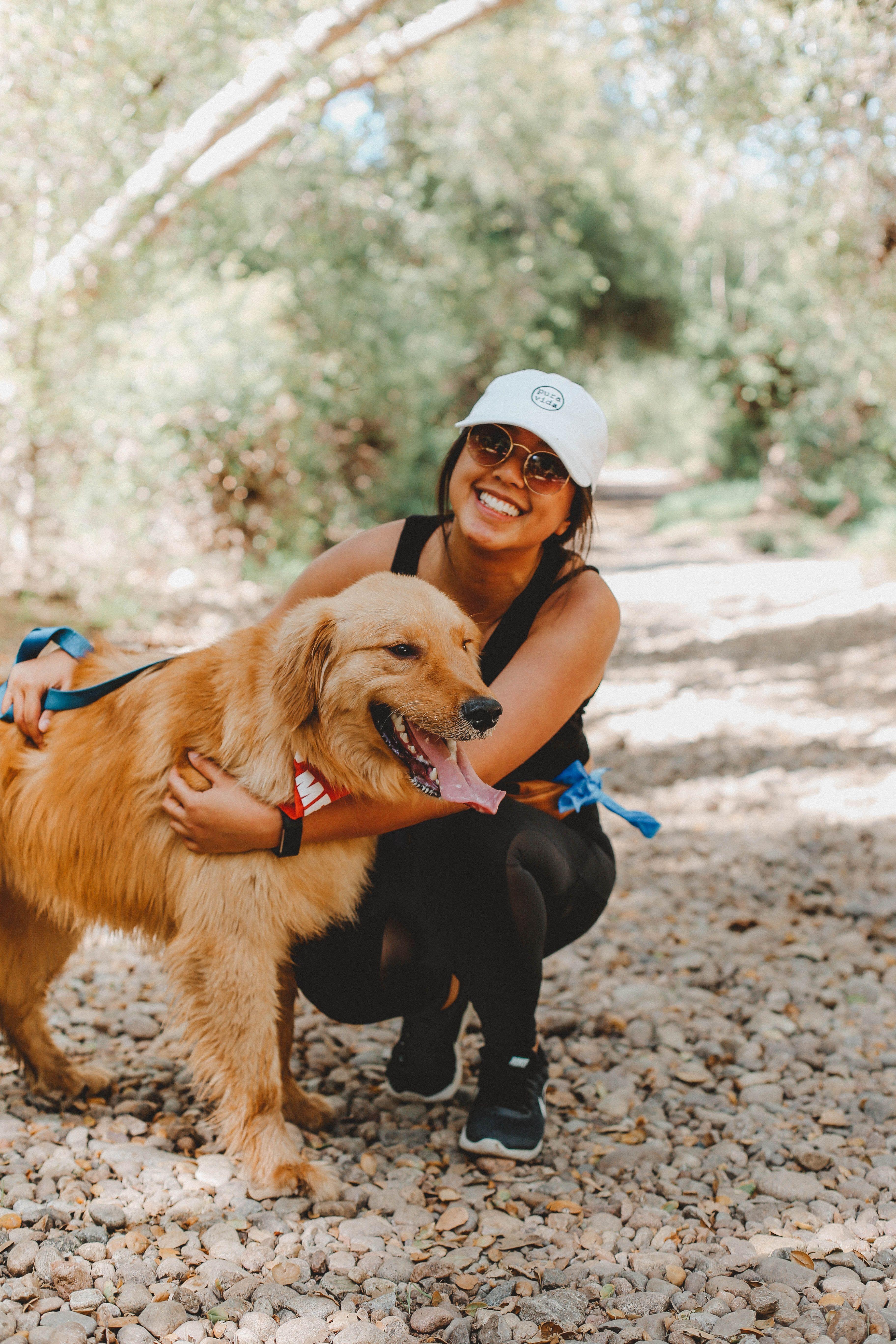 Pugchella Lou Reed Is Still On The Bill Coachella Pugs Pug Rescue Cute Animals