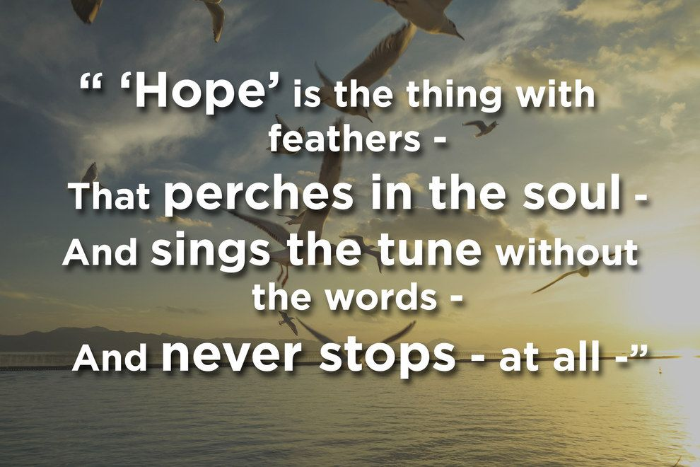 hope is the thing with feathers by Hope is the thing with feathers (254) emily dickinson , 1830 - 1886 hope is the thing with feathers that perches in the soul, and sings the tune without the words, and never stops at all, and sweetest in the gale is heard and sore must be the storm that could abash the little bird that kept so many warm.