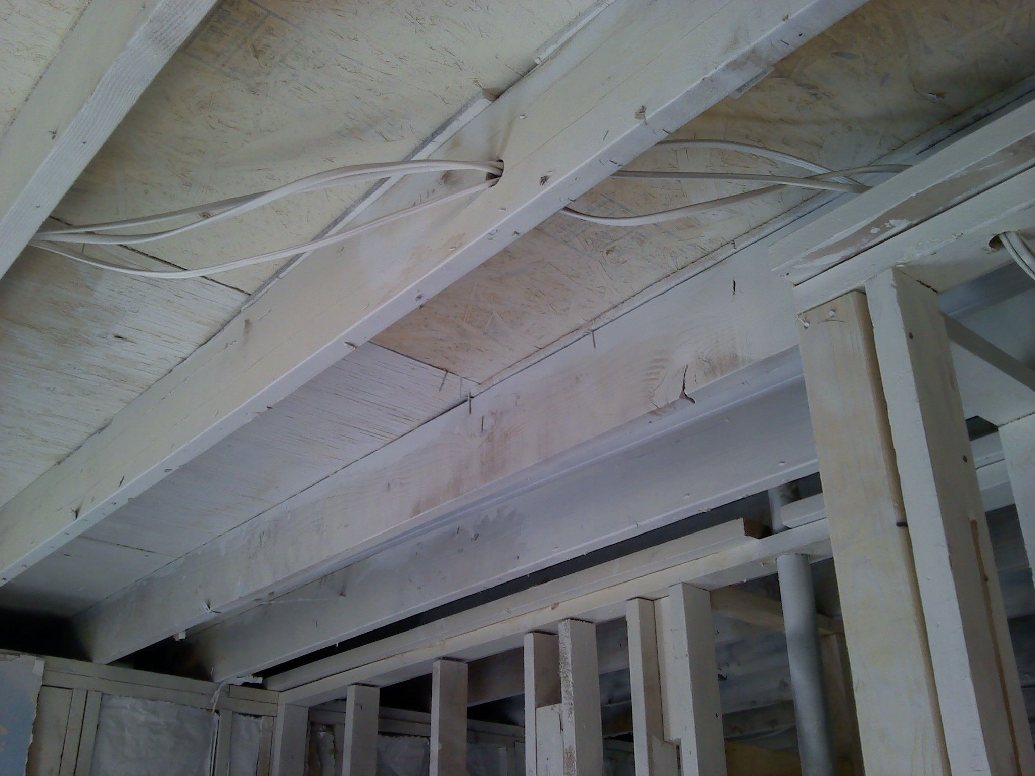 Paseo Full Renovation With Mold Remediation Yuk Mold Remover Mold Remediation Molding