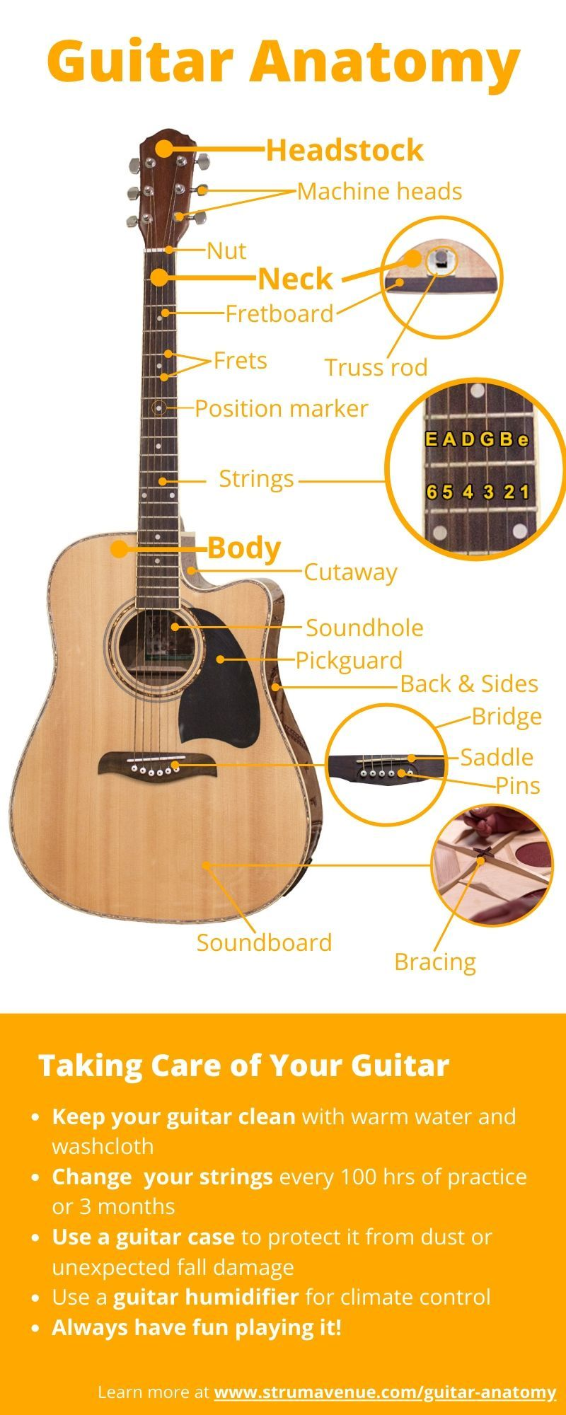 How Much Do You Know Your Acoustic Guitar Guitar Acoustic Guitar Parts Acoustic Guitar
