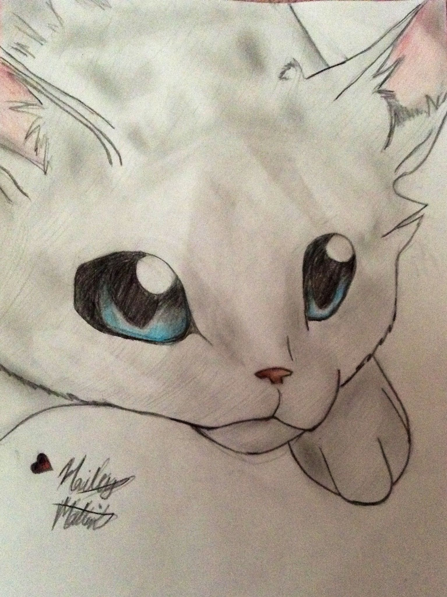 Color cats like - Dovewing Drawing It S Looks A Lot Like Ivypool Because I Don T Have A