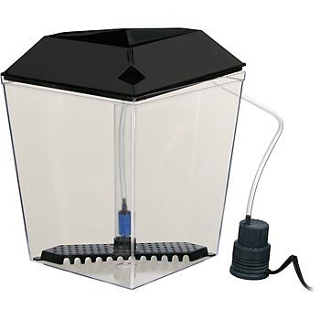 Petco 1 gallon corner aquarium kit this is what i had for Petco fish tank filters