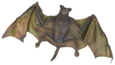 Activities For Kids About Bats And Echolocation Synonym Bat Activities For Kids Bats Activities Halloween Preschool