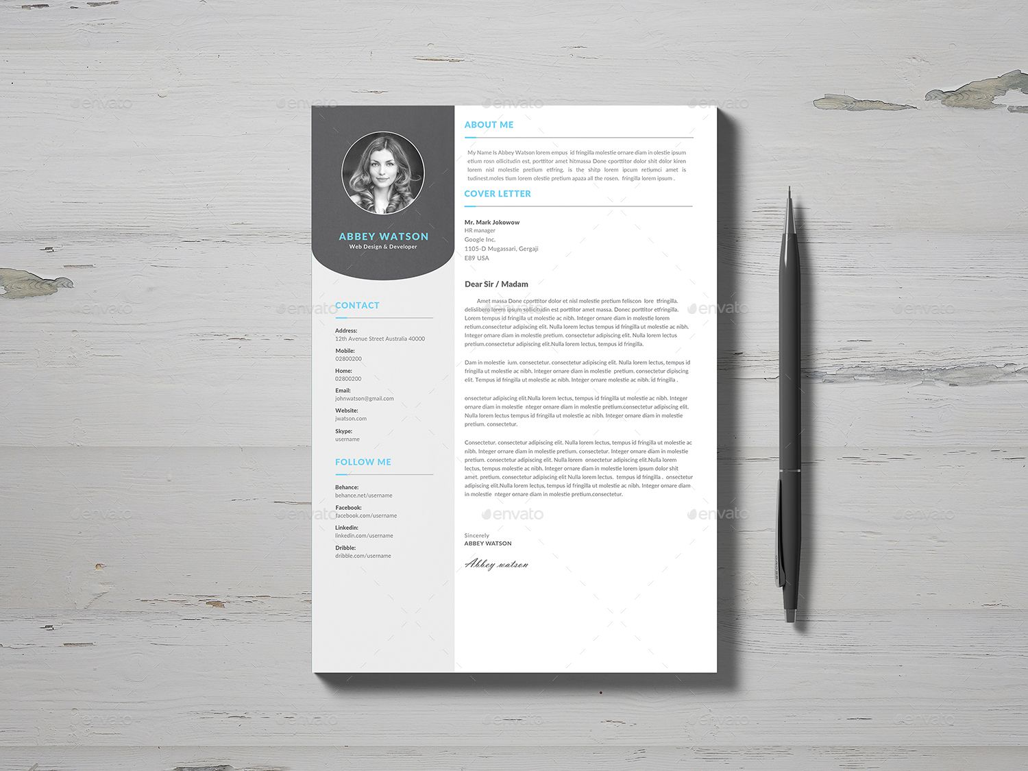 Resume Infographic resume, Clean resume template, Resume