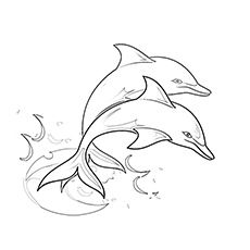Top 20 Free Printable Dolphin Coloring