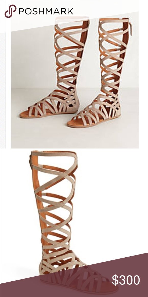 932e840c7e1 Suede Gladiator Sandals Super comfortable sandals made with soft grey taupe  Suede. Brand is Gentle Souls. Marked size 40 US Sold out at Anthropologie!