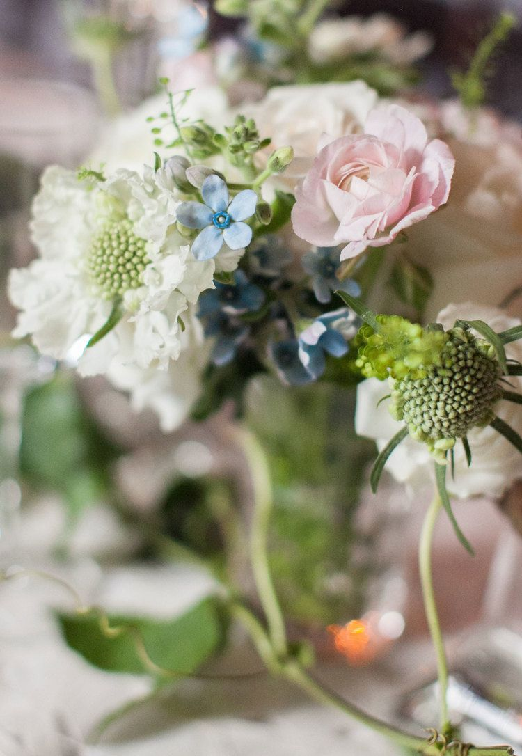 White scabiosa, pink ranunculus, blue tweedia and crawling passion ...