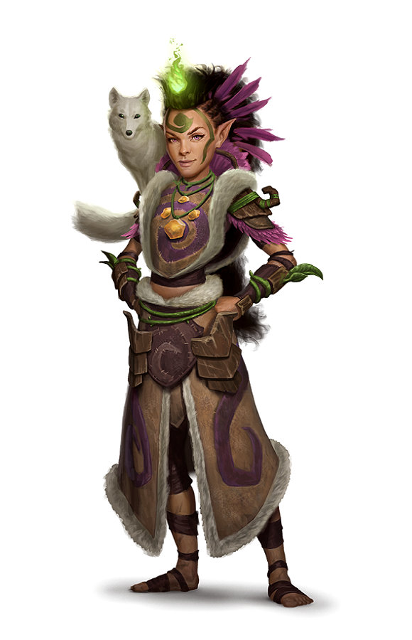 Female Gnome: Pathfinder PFRPG DND D&D 3.5 5th