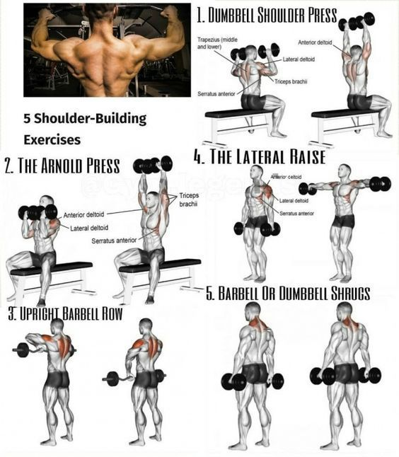 Dumbbell Chest Workouts For Men: Ways To Shape And Form Your Shoulders
