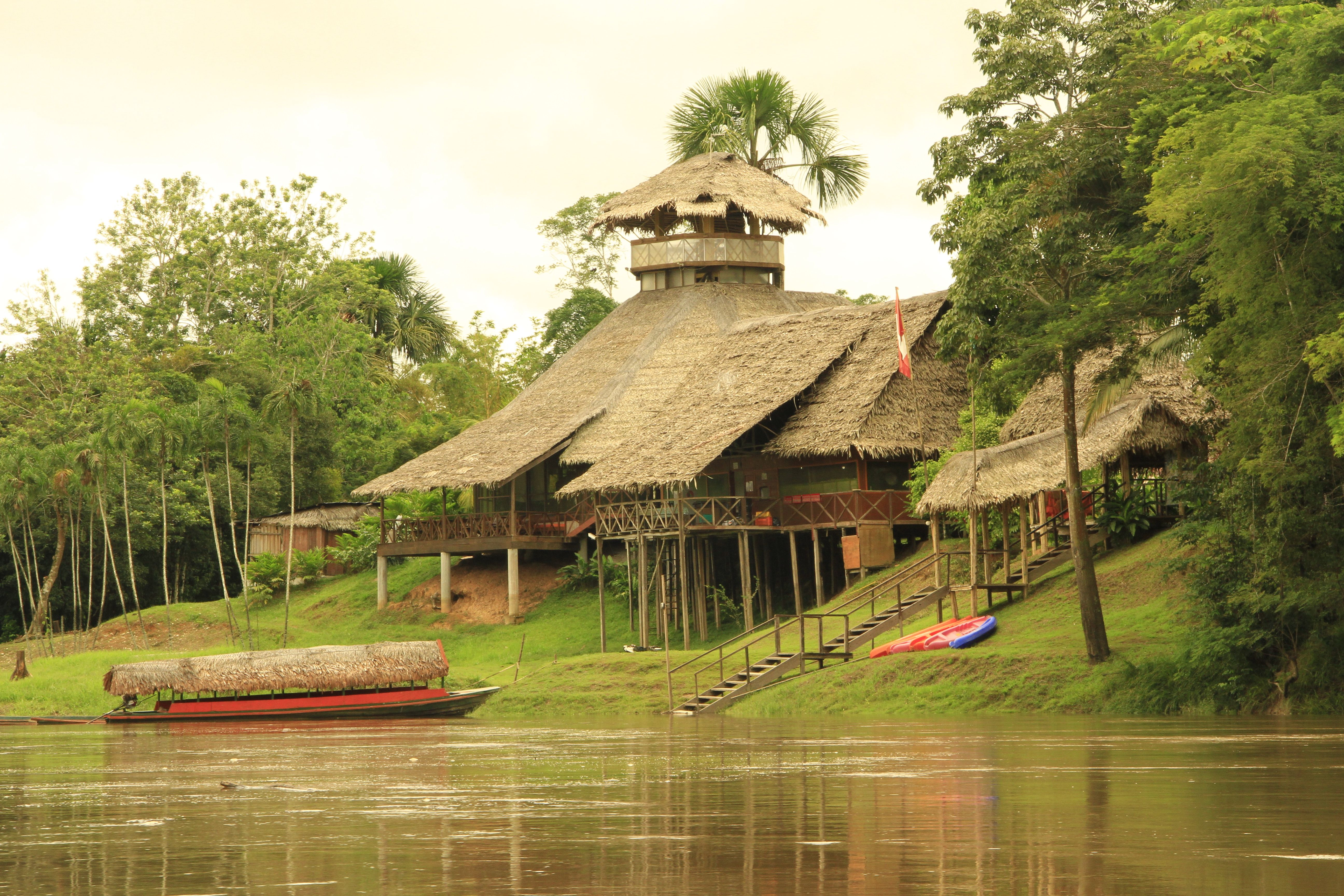 selva peru Buscar con Google Selva peru, Hoteles
