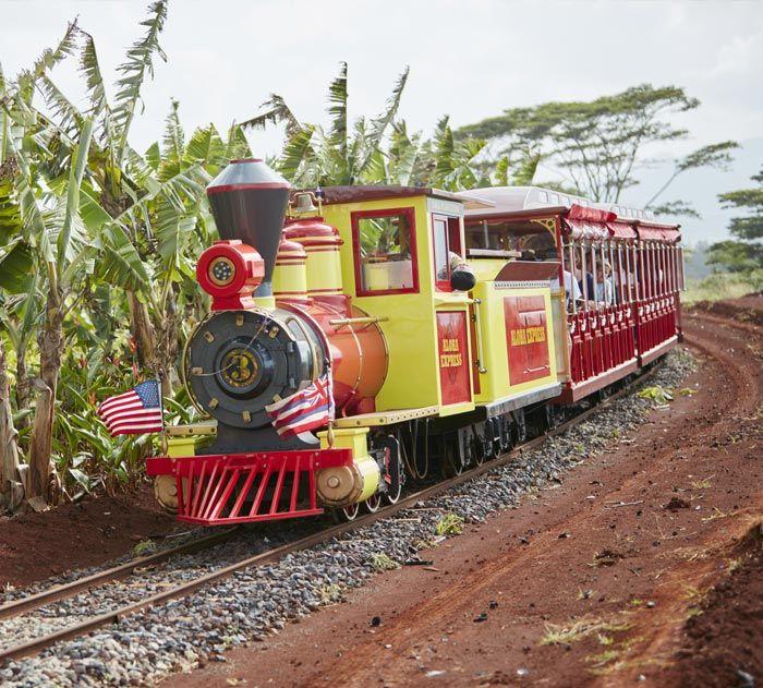 Express Train Ride Train tour, Train rides, Hawaii travel