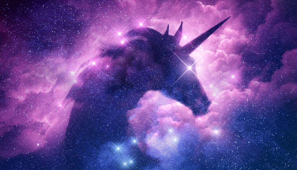Meet Tesla's unicorn   Greenbiz