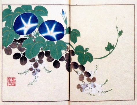 Title:其玉画譜 11 朝顔に萩 Book of pictures 11 Morning glory and Bush clover  Artist:中野其玉 Nakano Kigyoku