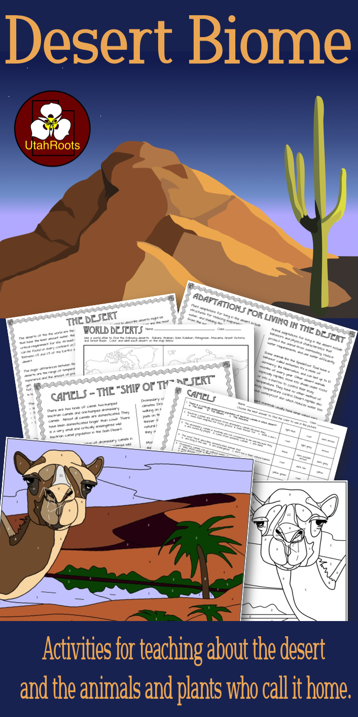Desert Biomes: Reading, Color-by-Number Worksheet, and ...