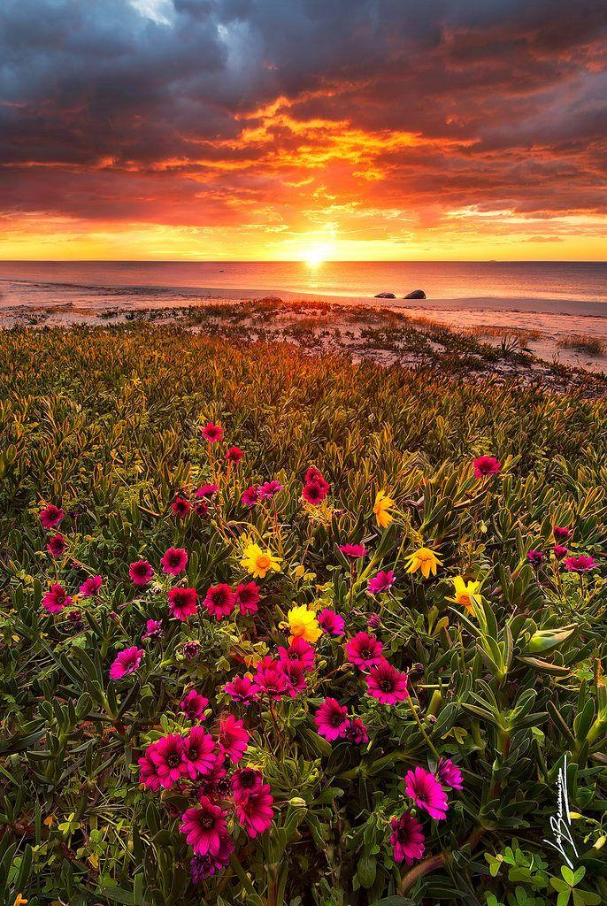 Sunrise Spring S Beautiful Nature Beautiful Landscapes Sunrise Pictures