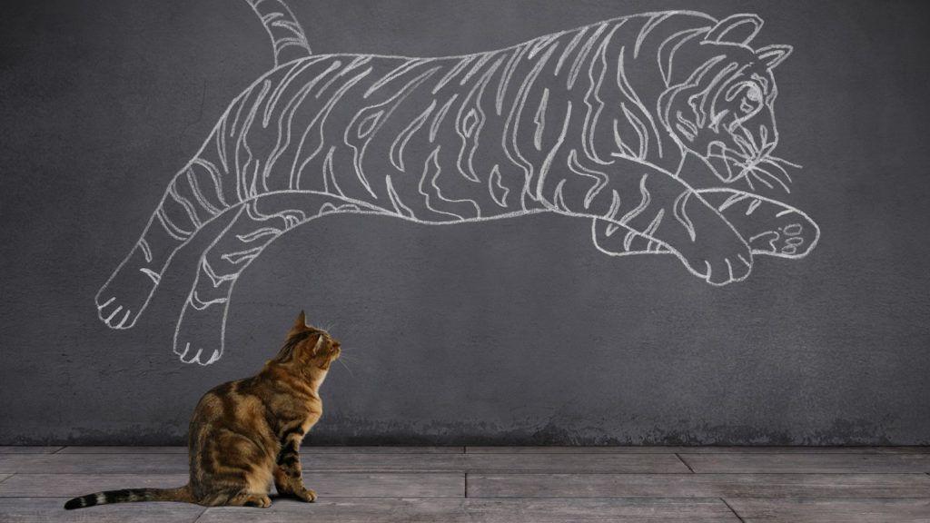 Real Estate Blogs & News Tabby cat, Cat sitting, Tabby