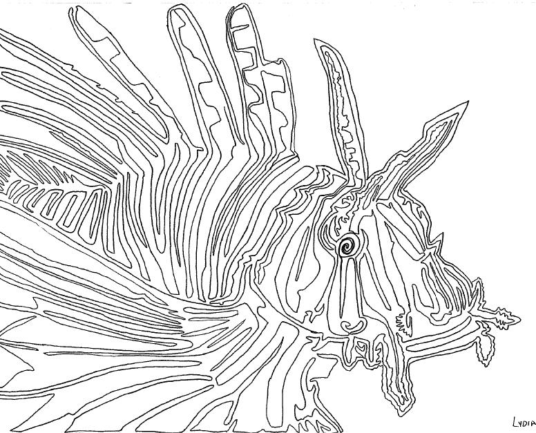 Coloring For Adults Kleuren Voor Volwassenen Continuous Line Drawing Line Drawing Lion Fish