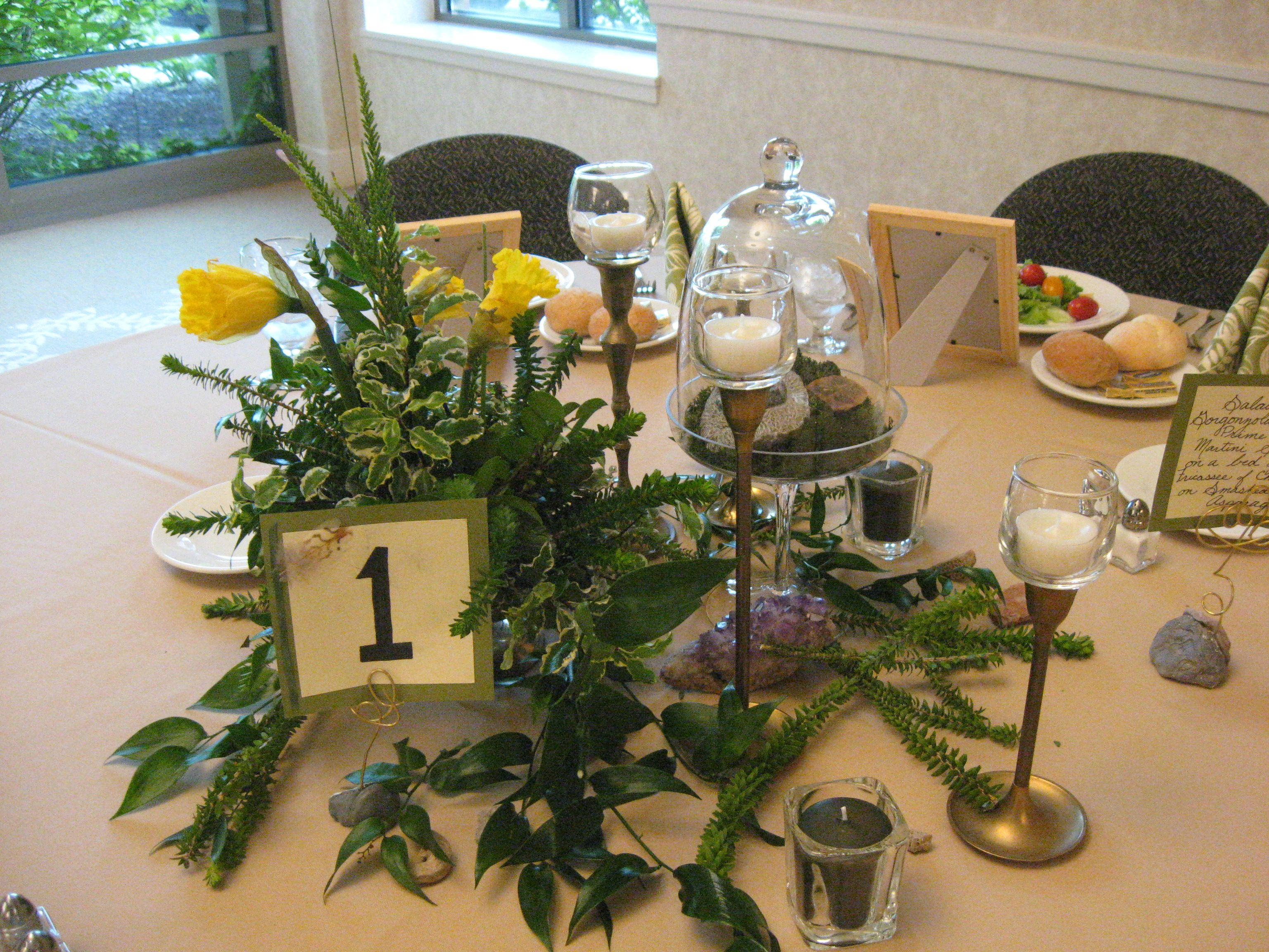 Vintage Natural Sciences Was The Theme Decor By Kreative Rentals Decor Woodland Party Natural Curiosities