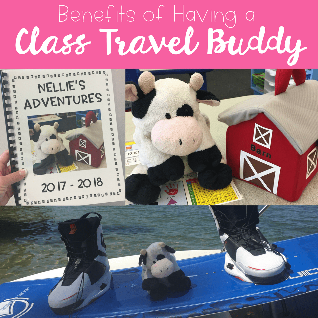 The Benefits Of Having A Class Travel Buddy