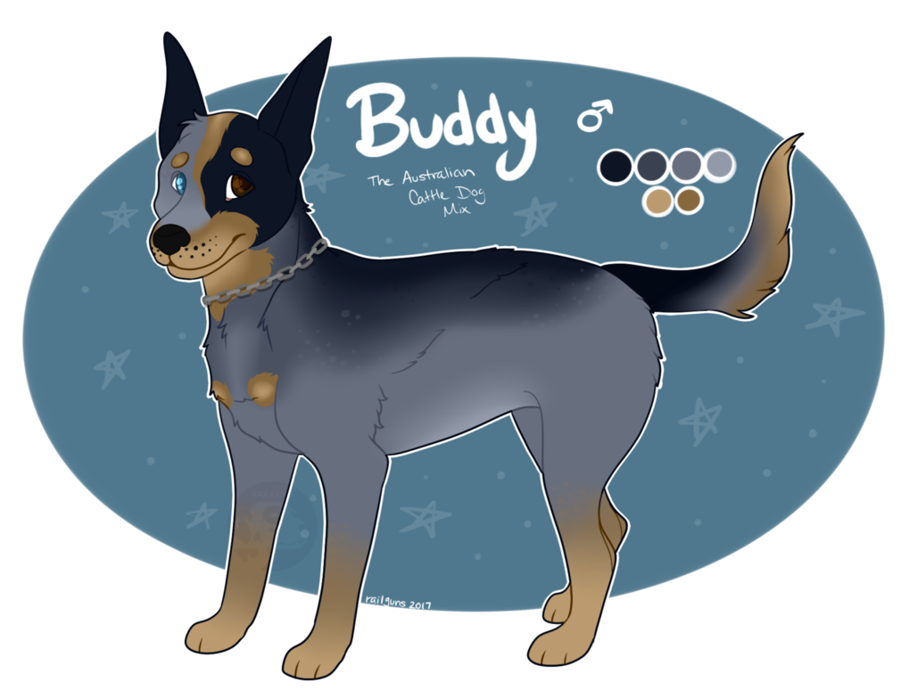 Buddy Reference 2017 by Railguns