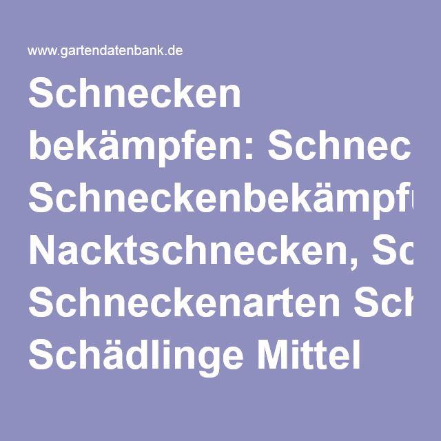 Fabulous  best ideas about Schneckenbek mpfung on Pinterest Altes fenster gew chshaus M cken absto en and Unkrautvernichtung