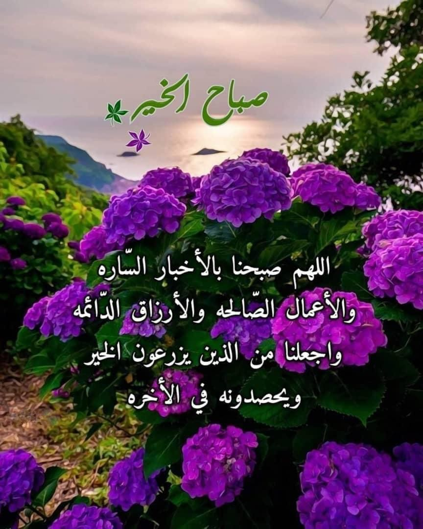 اللهم صبحنا بالأخبار السارة صباح الخير Good Morning Flowers Good Morning Images Good Morning Messages