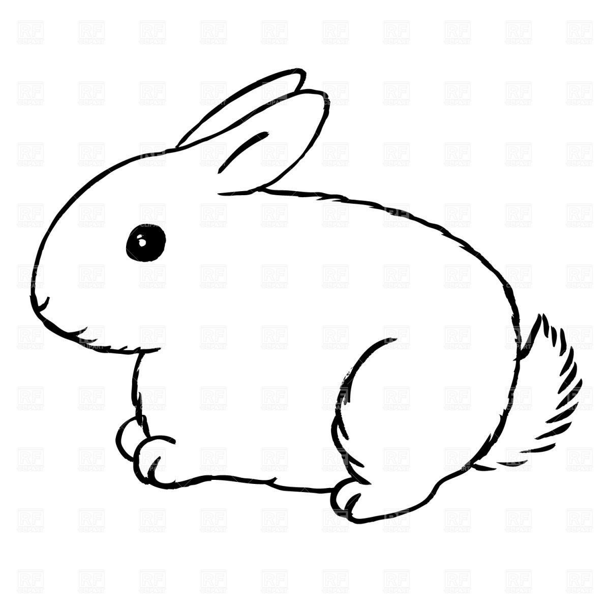 drawings of rabbits and bunnies use these free images for your websites art projects reports and  [ 1200 x 1200 Pixel ]