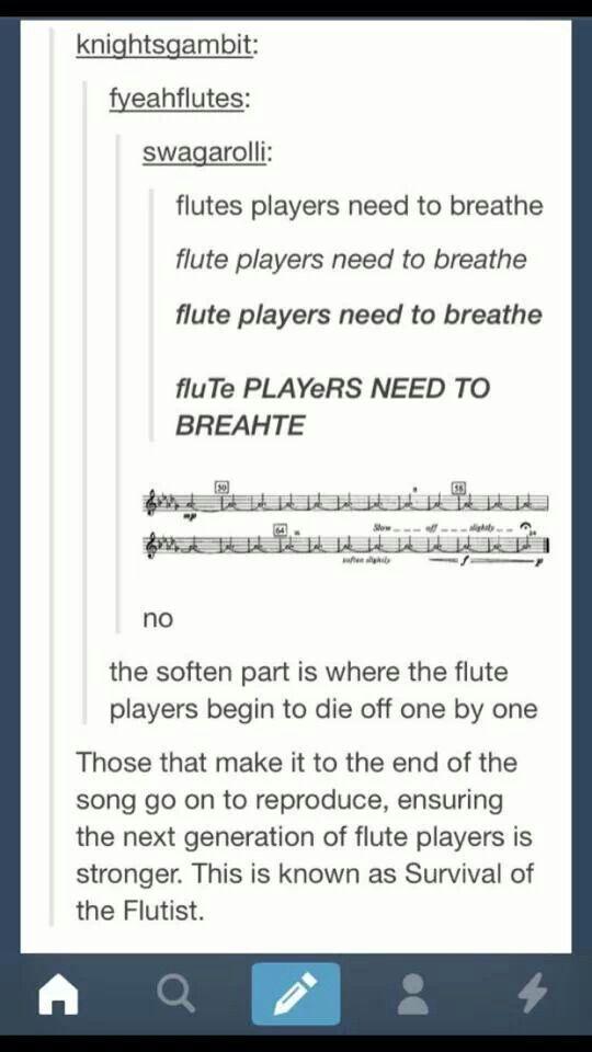 Ich habe Flöte gespielt. gewöhnt an – Lau Ho