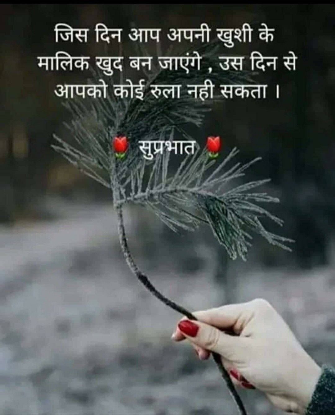 Pin By Madhu Sheel On Good Morning Good Morning Quotes Hindi