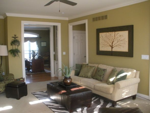 Green and brown living room home decor ideas living - Brown and green living room accessories ...