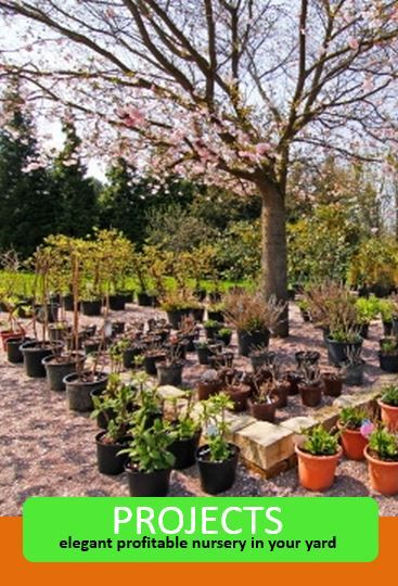 We Will Help You To Whole Plants Trees Shrubs Herbs And Grow For Profit On Our Marketplace Other Nurseries In Network