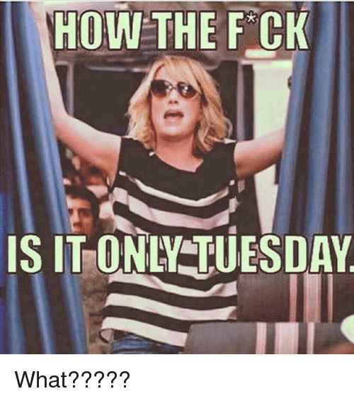 41 Tuesday Memes That Are Just Hilarious Ladnow Work Quotes Funny Tuesday Quotes Funny Funny Friday Memes