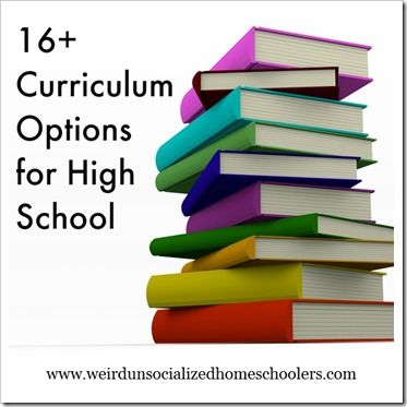 school curriculum The national curriculum for england to be taught in all local-authority-maintained schools.