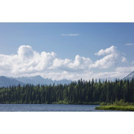 View Of The Alaska Range From Byers Lake Summer Denali State Park Southcentral Alaska Canvas Art - Kevin Smith Design Pics (38 x 24)