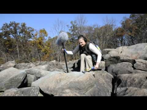 Deborah Peters, a graphic designer at Pennsylvania College of Technology and a '97 graphic design graduate, explores the amazing sounds of Ringing Rocks Park in Bucks County, Pa