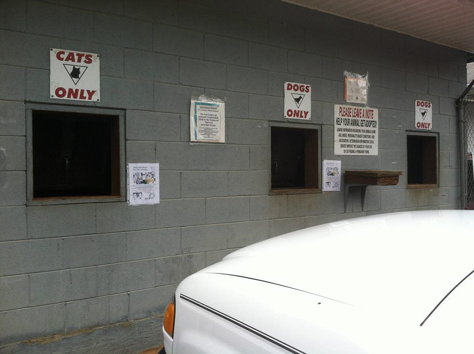 14+ Rutherford county animal control ideas in 2021
