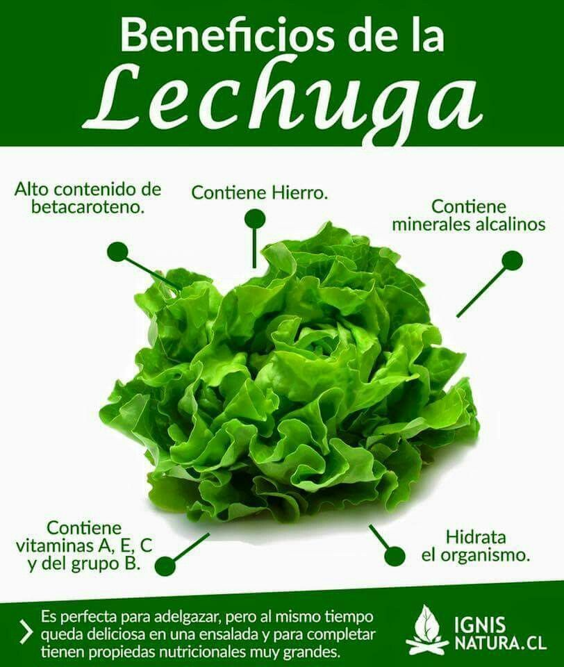 Beneficios De La Lechuga Vegetable Benefits Fruit Health Benefits Nutrition Recipes